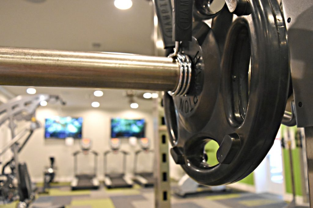 Hampton Free Weights - Olympic Plates - by Elite Exercise Equipment