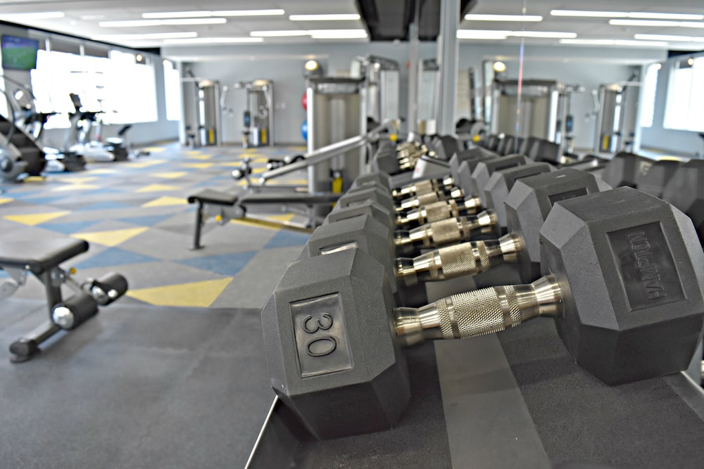 Hampton Free Weights by Elite Exercise Equipment